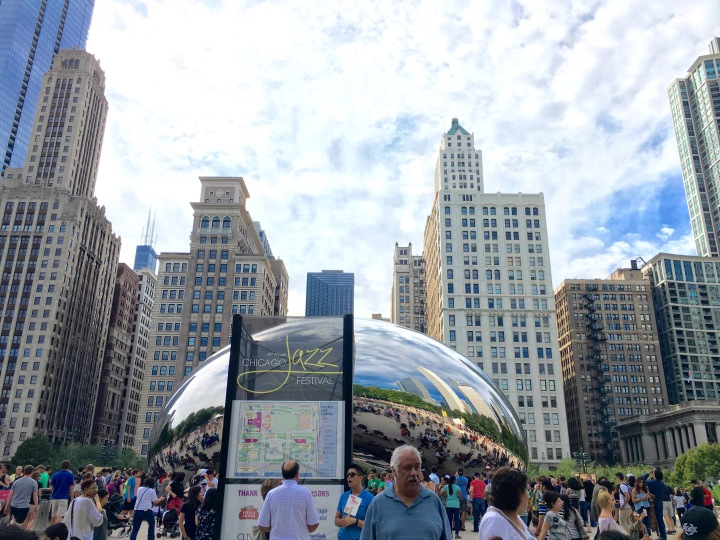 Life update: Chicago Jazz Fest, Recent cat photos, friend visit