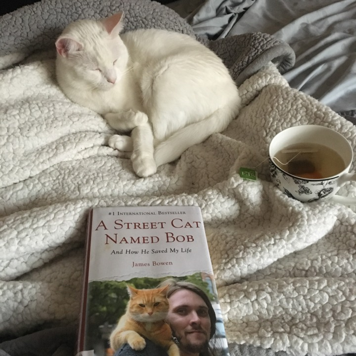 Book review: A Street Cat Named Bob (spoiler alert)