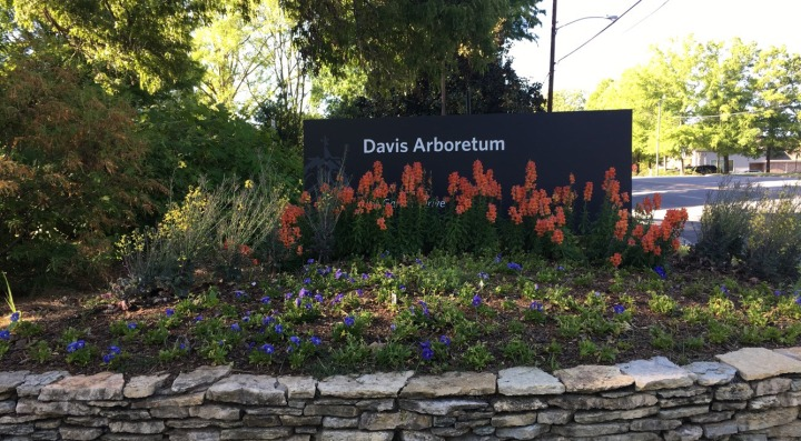 A walk around Donald E. Davis Arboretum + introducing Justice the pup!