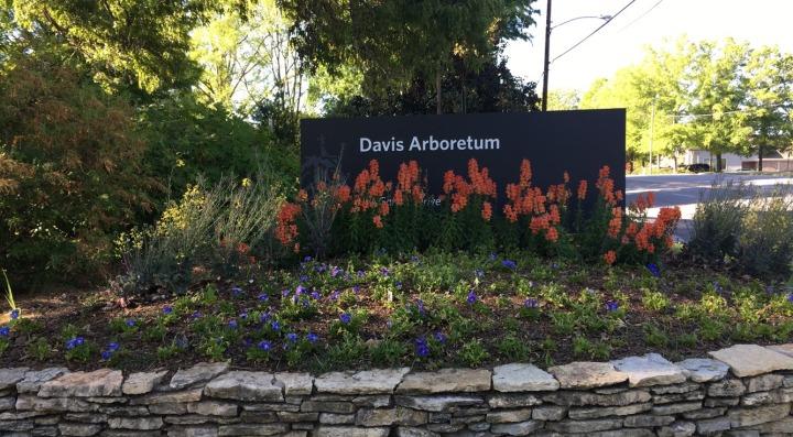 A walk around Donald E. Davis Arboretum + introducing Justice thepup!